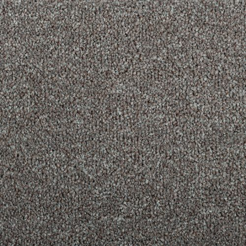 Abingdon stainfree rustique rich coffee carpet Moseley interiors