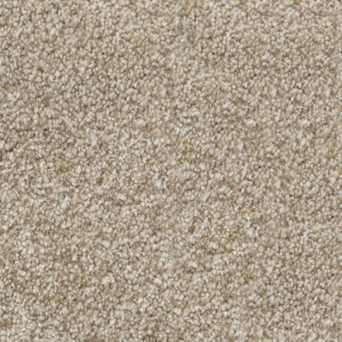 Abingdon Stainfree Majesty Cashmere Carpet Moseley Interiors