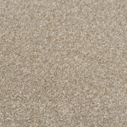 Abingdon Stainfree Majesty Country Beige Carpet Moseley Interiors