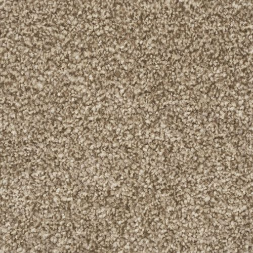 Abingdon Stainfree Royale Brioche Carpet Moseley Interiors