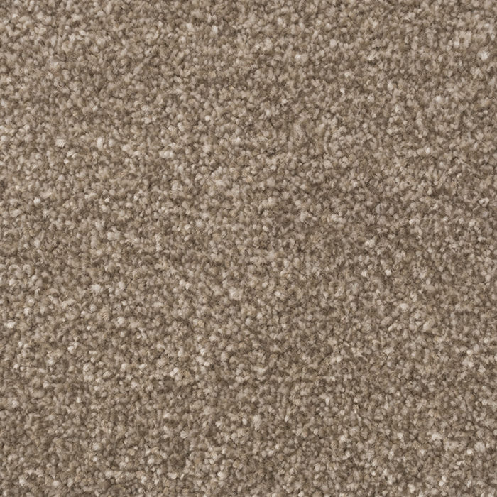 29679 furthermore Wilton Royal Charter Supreme Gold Buttermilk as well Aqua Protec Stainfree Contract Collection Aubergine further Stainfree Royale Mink furthermore Gallery. on orion carpets inc