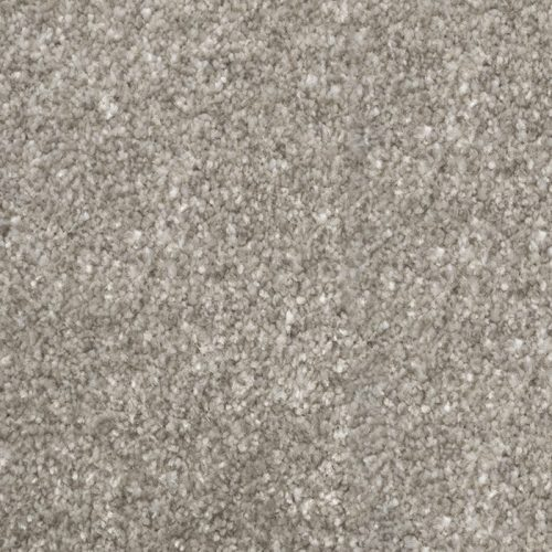 Abingdon Stainfree Royale Shadow Carpet Moseley Interiors