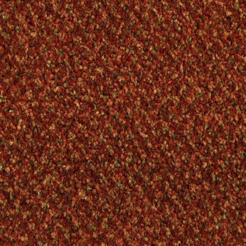 Abingdon Aqua ProTec Stainfree Contract Collection Paprika carpet Moseley Interiors