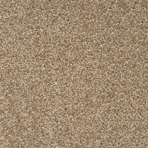 Loving Touch Ermine Carpet Love Story Collection Abingdon Flooring Moseley Interiors