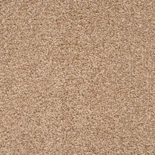 Loving Touch Gazelle Carpet Love Story Collection Abingdon Flooring Moseley Interiors