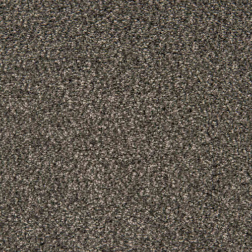 Loving Touch Panther Carpet Love Story Collection Abingdon Flooring Moseley Interiors