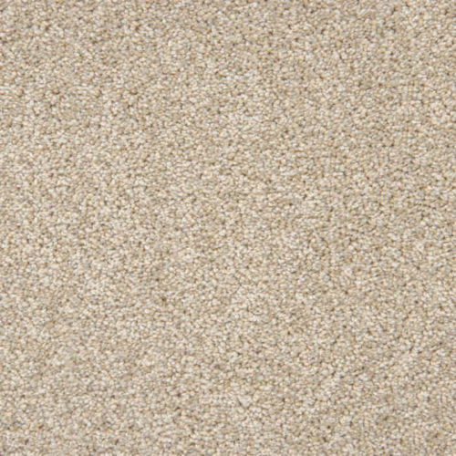 Loving Touch Possum Carpet Love Story Collection Abingdon Flooring Moseley Interiors