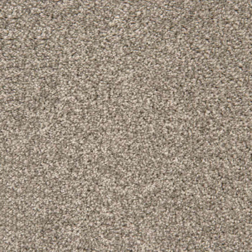 Loving Touch Silver Fox Carpet Love Story Collection Abingdon Flooring Moseley Interiors